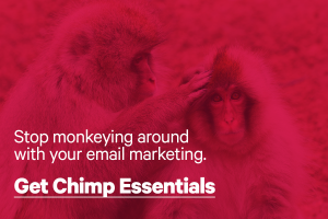 Learn Mailchimp from Paul Jarvis in this online course.